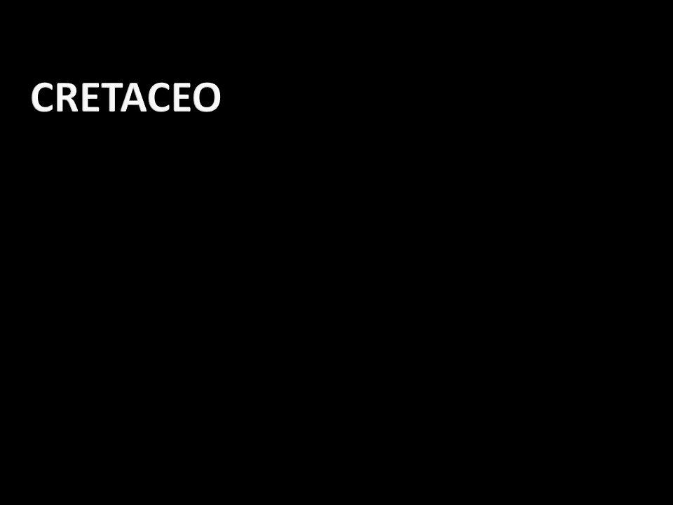 CRETACEO