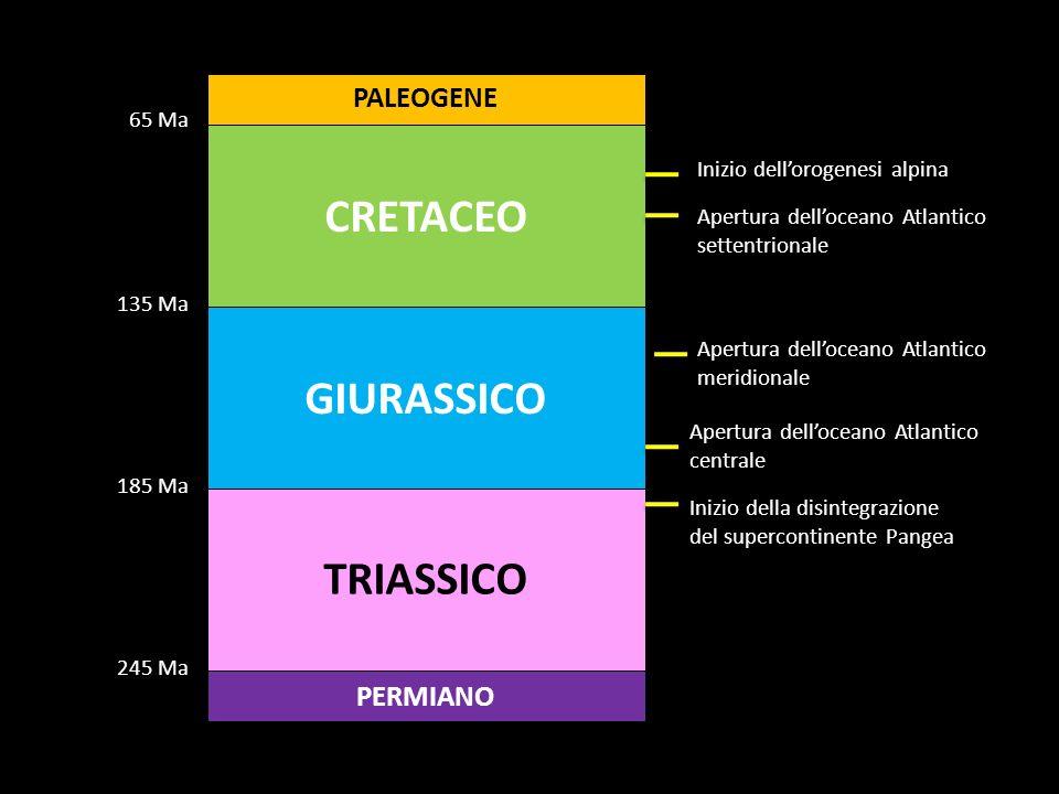 CRETACEO GIURASSICO TRIASSICO