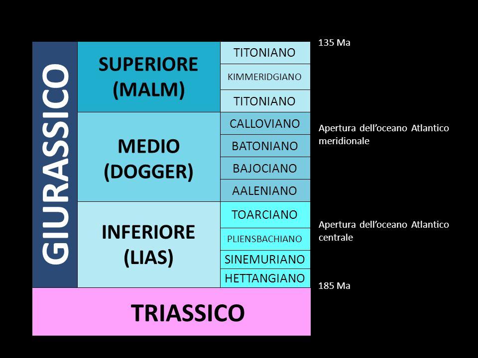 GIURASSICO TRIASSICO SUPERIORE (MALM) MEDIO (DOGGER) INFERIORE (LIAS)