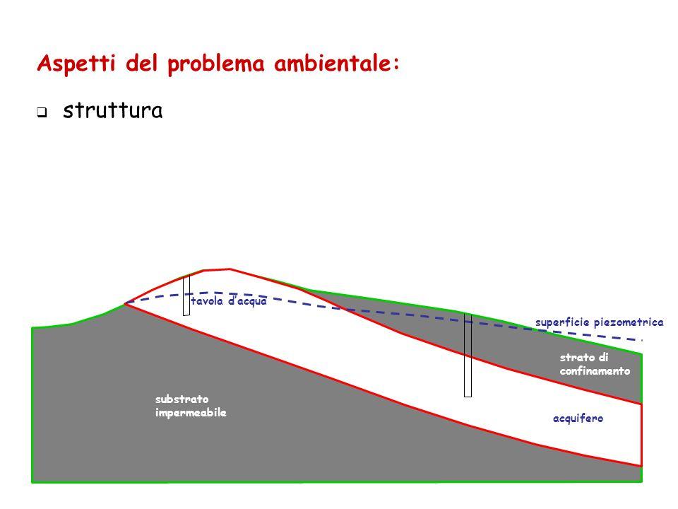 Aspetti del problema ambientale: struttura