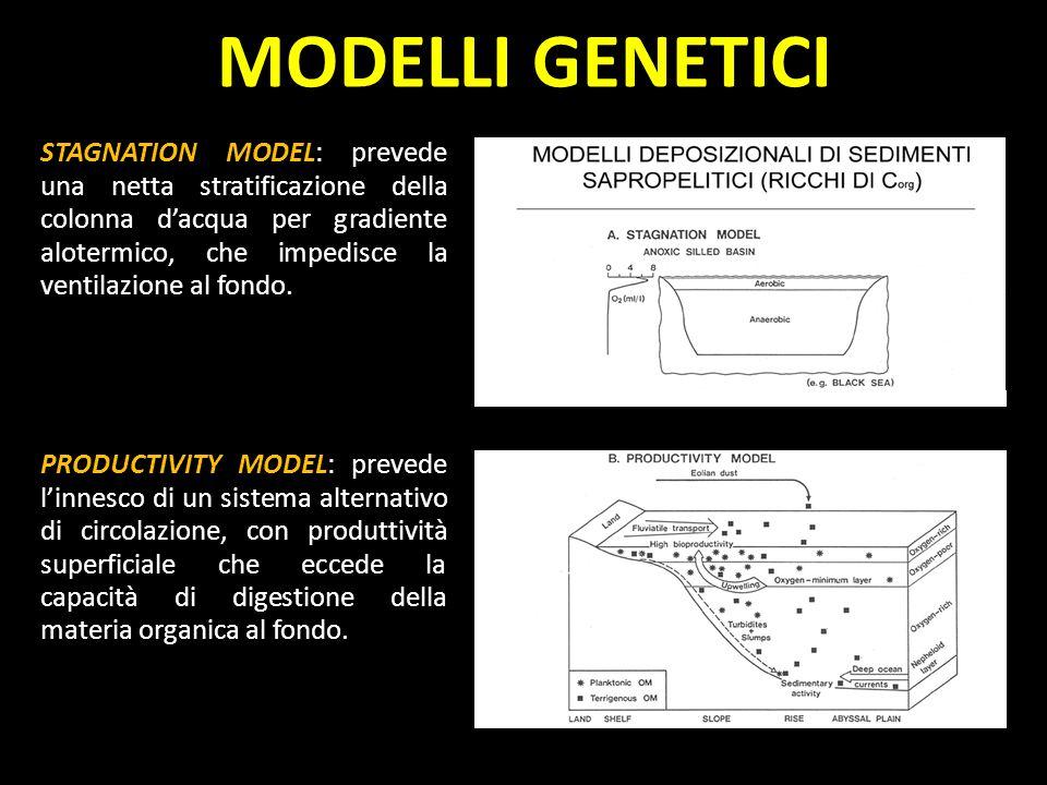 MODELLI GENETICI
