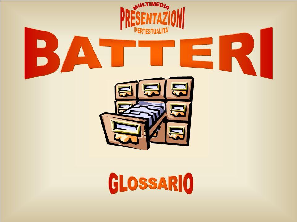 MULTIMEDIA IPERTESTUALITA PRESENTAZIONI BATTERI GLOSSARIO