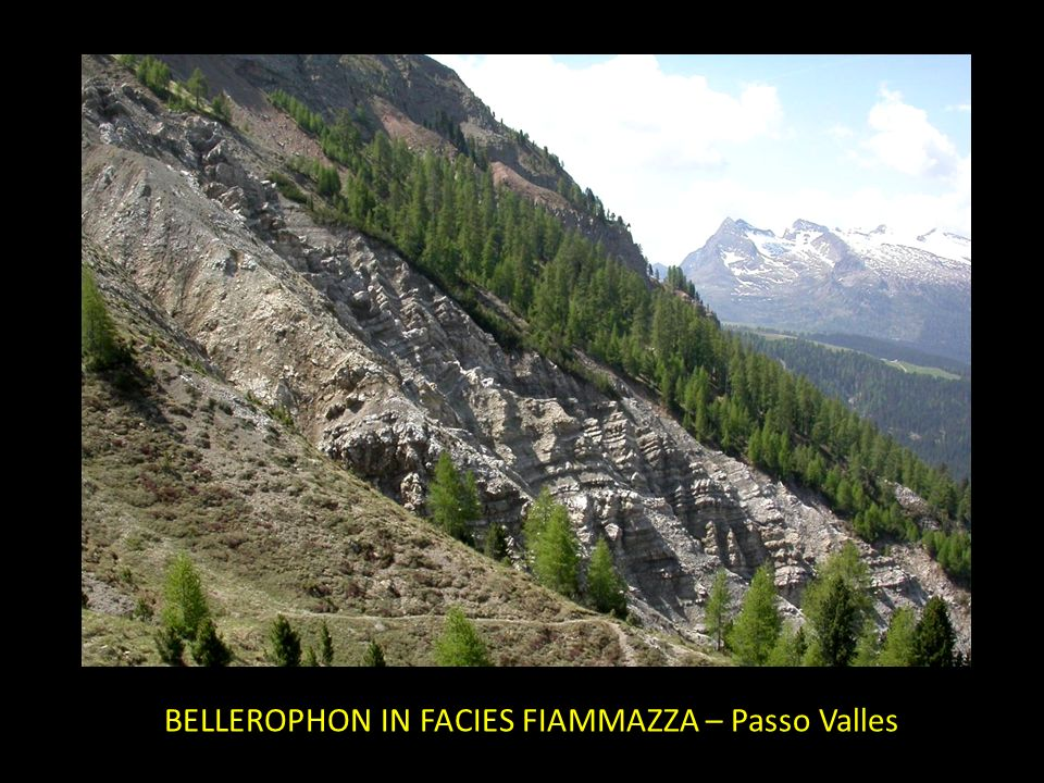 BELLEROPHON IN FACIES FIAMMAZZA – Passo Valles