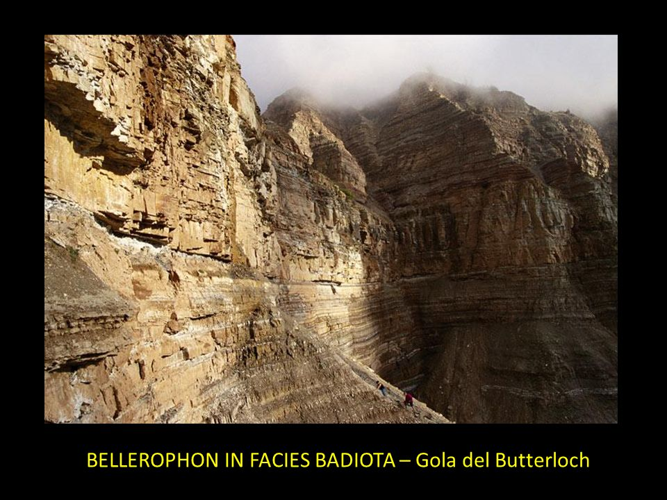BELLEROPHON IN FACIES BADIOTA – Gola del Butterloch