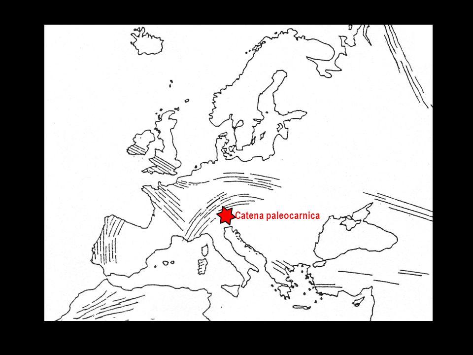 Catena paleocarnica