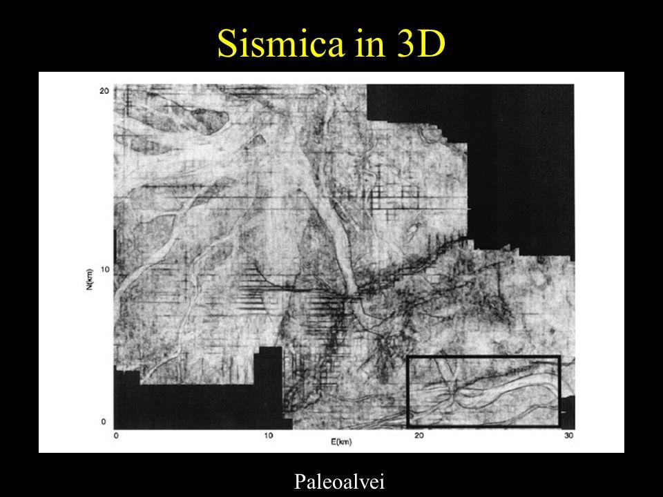 Sismica in 3D Paleoalvei