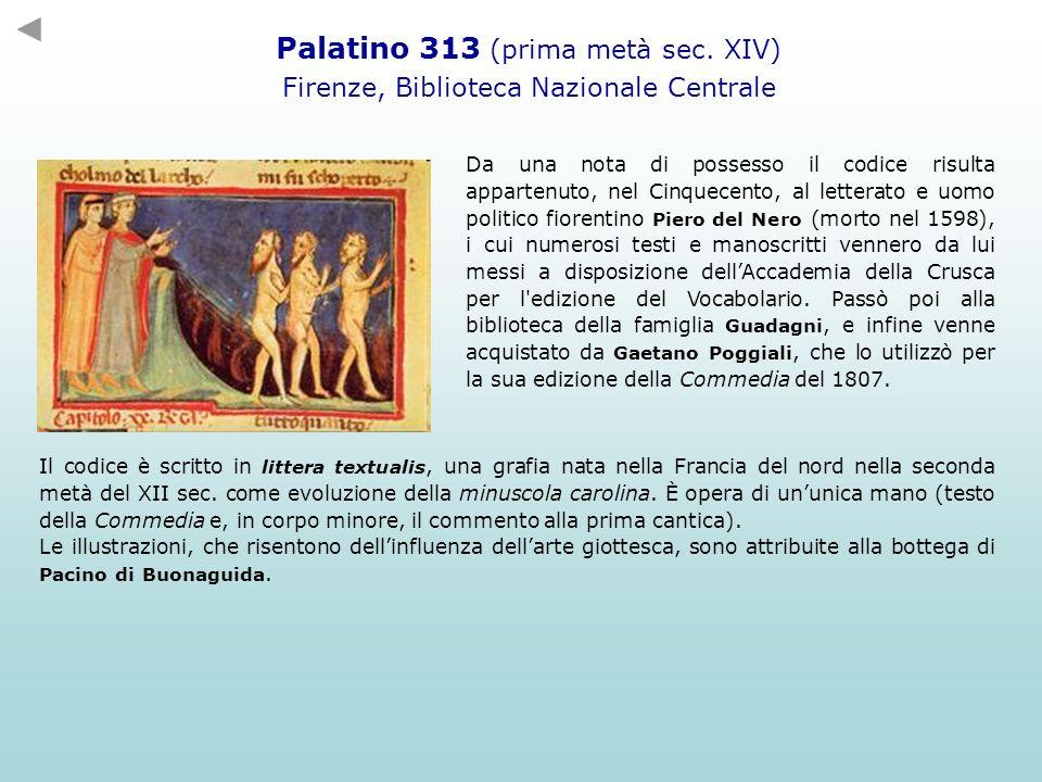 Palatino 313 (prima metà sec. XIV)
