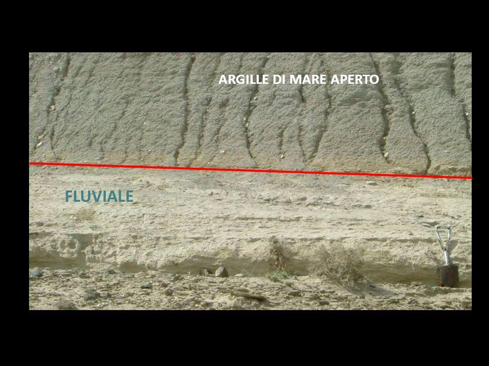 ARGILLE DI MARE APERTO FLUVIALE