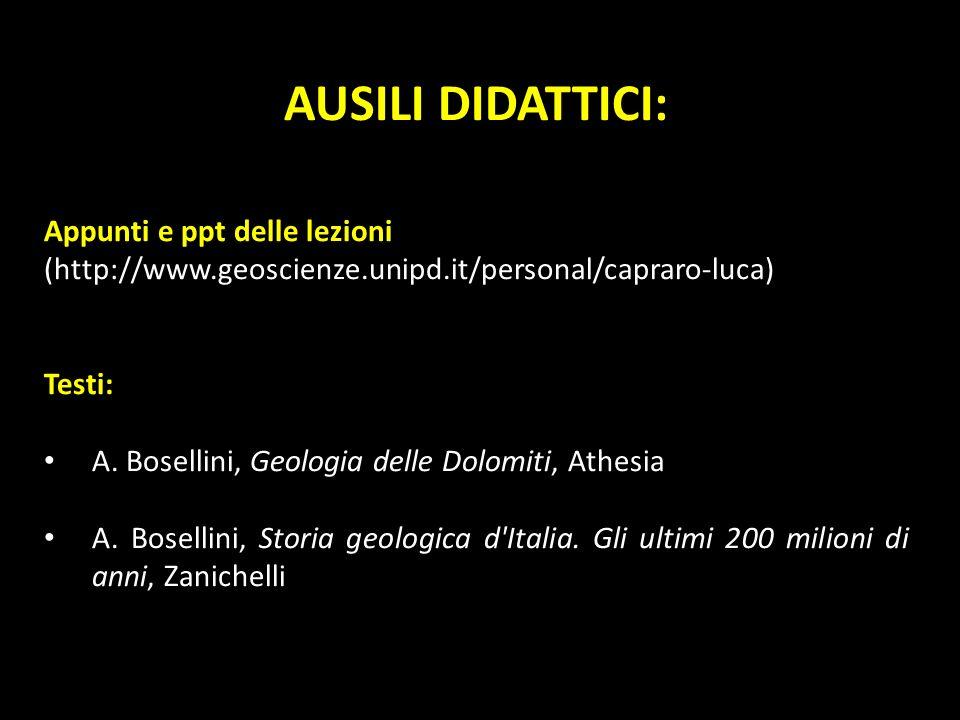 AUSILI DIDATTICI: Appunti e ppt delle lezioni (http://www.geoscienze.unipd.it/personal/capraro-luca)