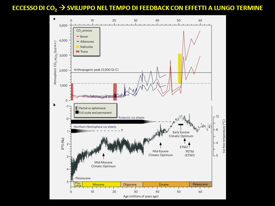 ECCESSO DI CO2  SVILUPPO NEL TEMPO DI FEEDBACK CON EFFETTI A LUNGO TERMINE