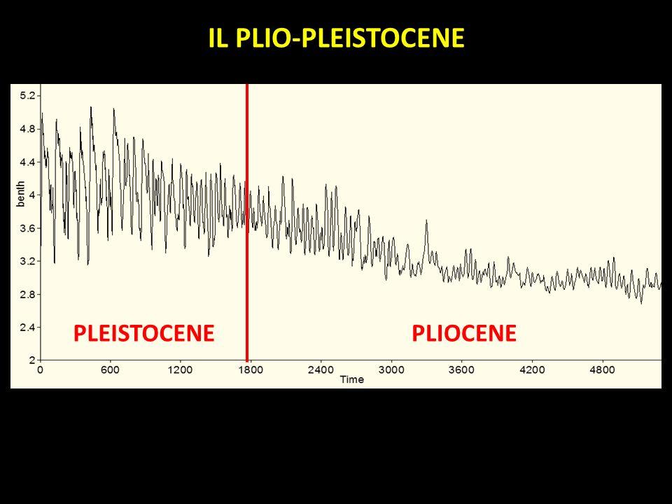IL PLIO-PLEISTOCENE PLEISTOCENE PLIOCENE