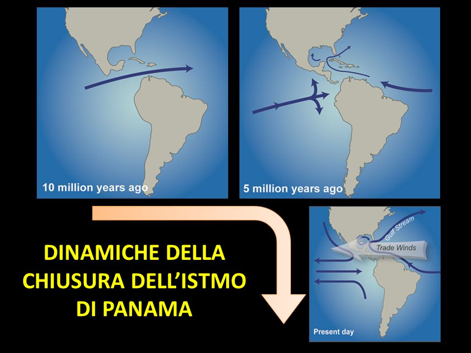 DINAMICHE DELLA CHIUSURA DELL'ISTMO DI PANAMA