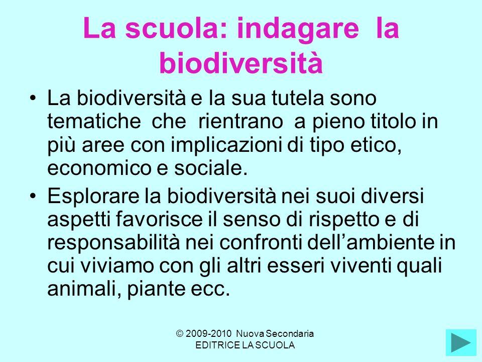 La scuola: indagare la biodiversità