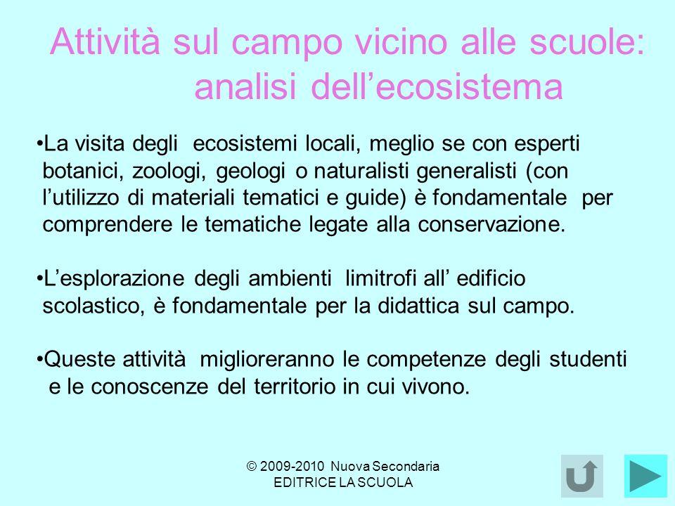 Attività sul campo vicino alle scuole: analisi dell'ecosistema
