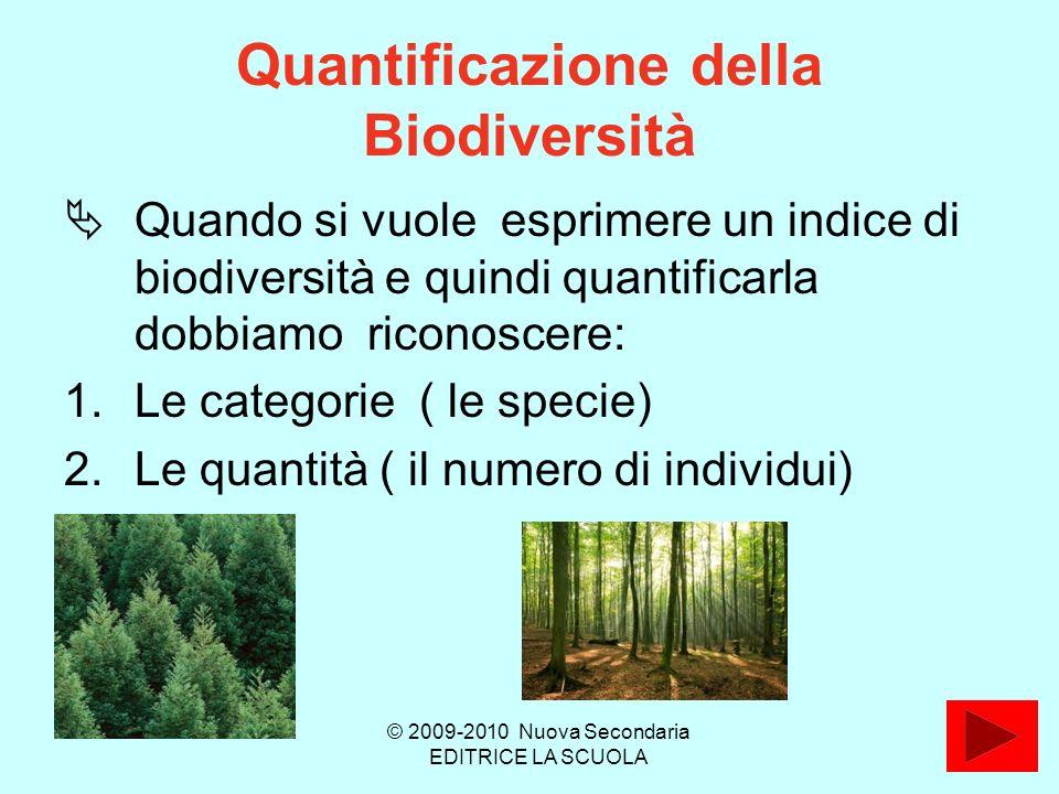 Quantificazione della Biodiversità