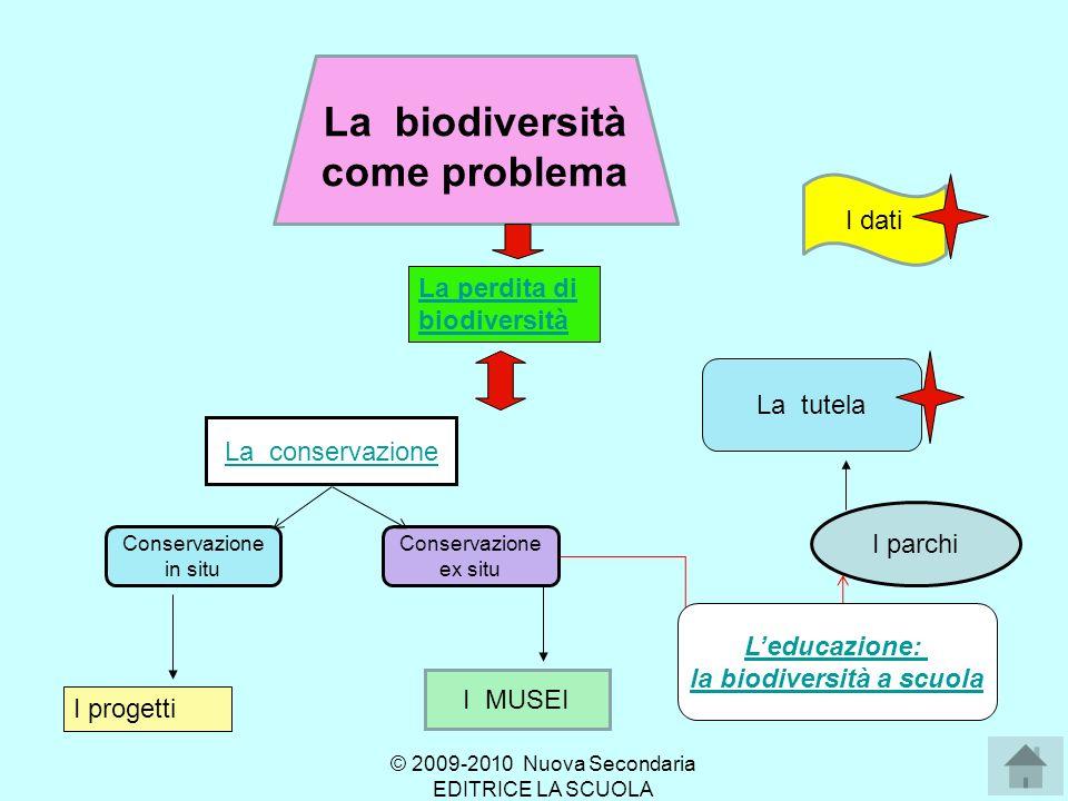 La biodiversità come problema