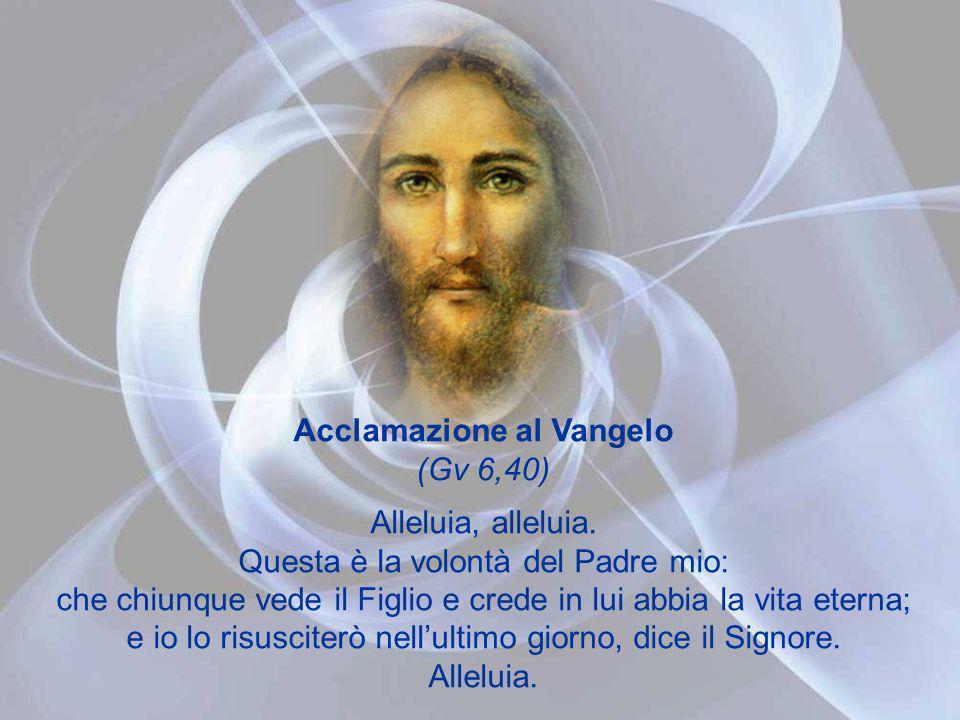 Acclamazione al Vangelo (Gv 6,40)