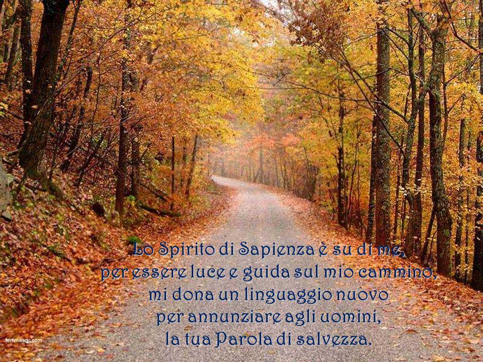 Lo Spirito di Sapienza è su di me,