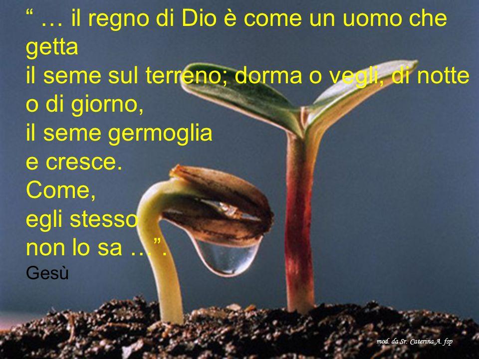 … il regno di Dio è come un uomo che getta