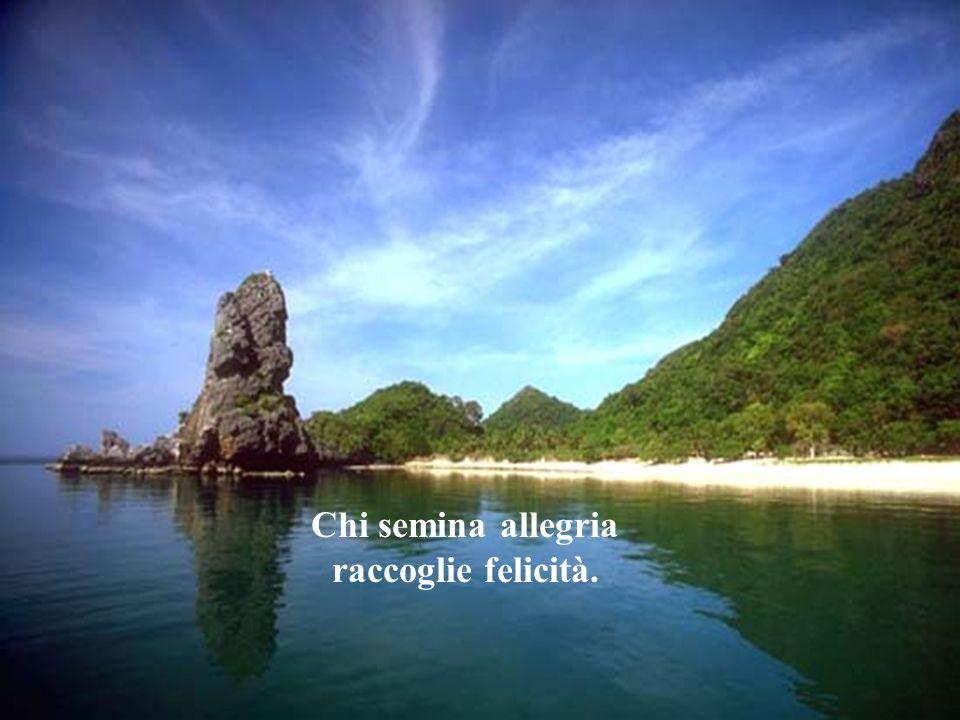 Chi semina allegria raccoglie felicità.
