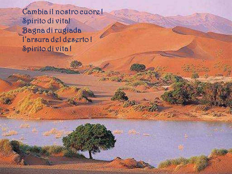 Cambia il nostro cuore ! Spirito di vita! Bagna di rugiada l'arsura del deserto ! Spirito di vita !