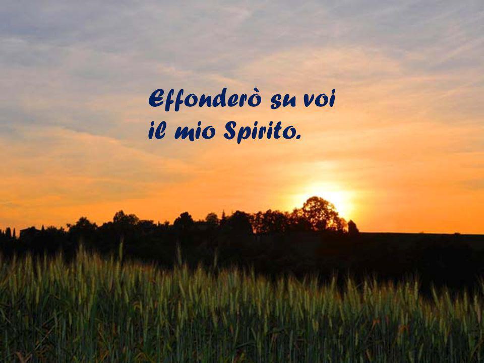 Effonderò su voi il mio Spirito.