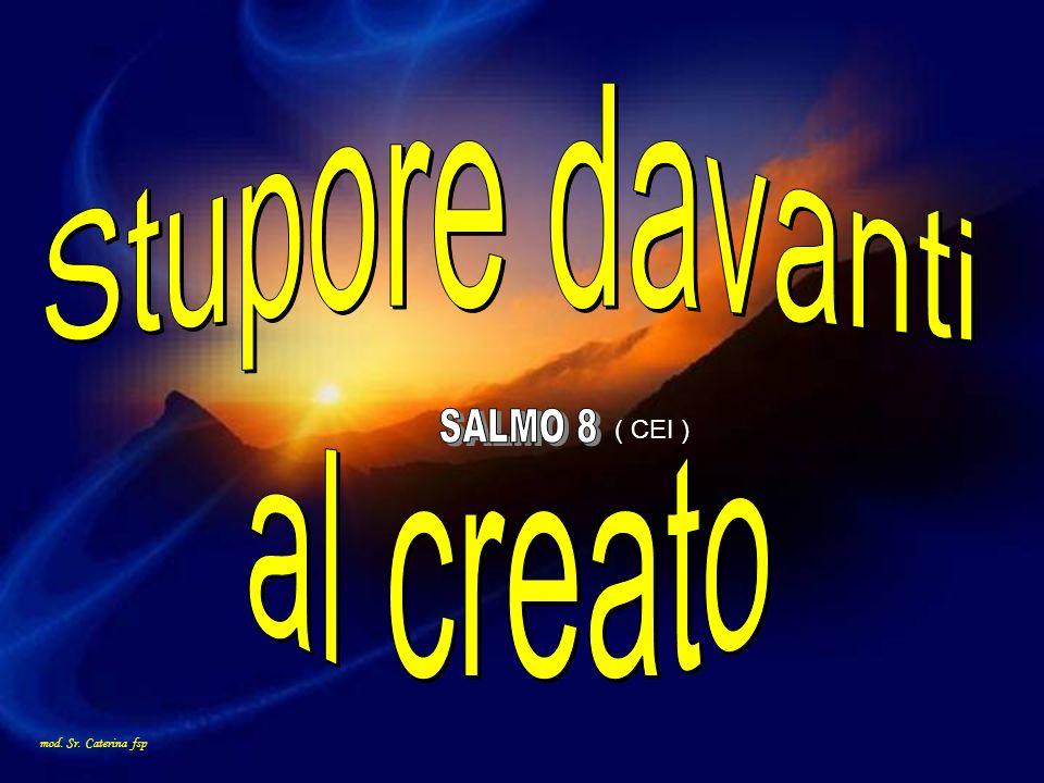 Stupore davanti al creato SALMO 8 ( CEI ) mod. Sr. Caterina fsp