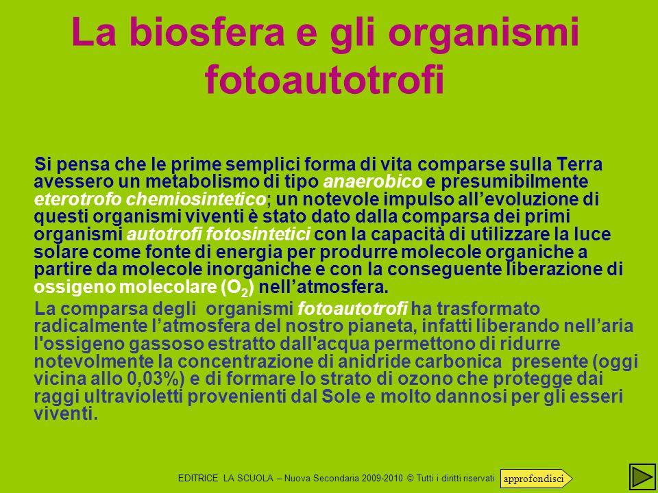 La biosfera e gli organismi fotoautotrofi