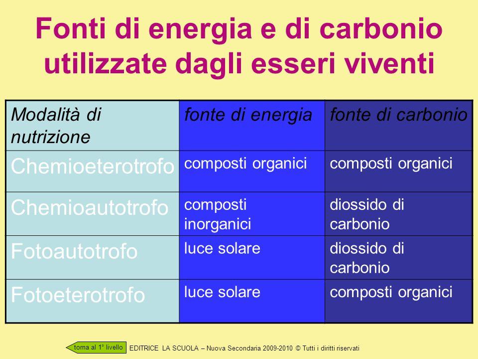 Fonti di energia e di carbonio utilizzate dagli esseri viventi