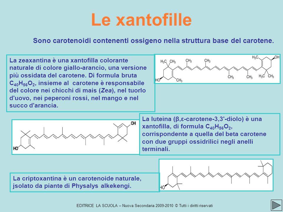 Le xantofille Sono carotenoidi contenenti ossigeno nella struttura base del carotene.