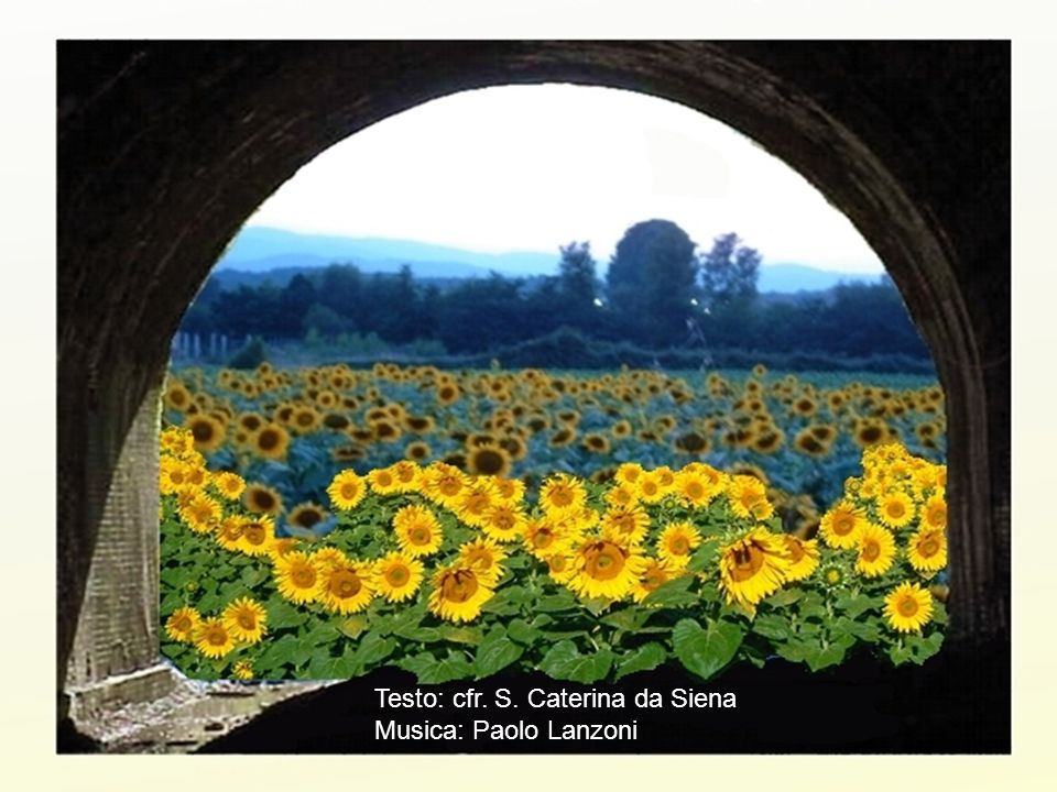 Testo: cfr. S. Caterina da Siena Musica: Paolo Lanzoni