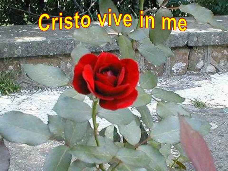 Cristo vive in me
