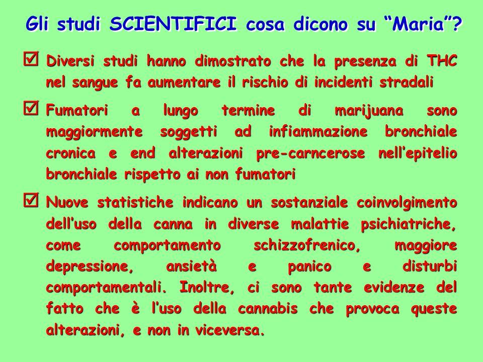 Gli studi SCIENTIFICI cosa dicono su Maria