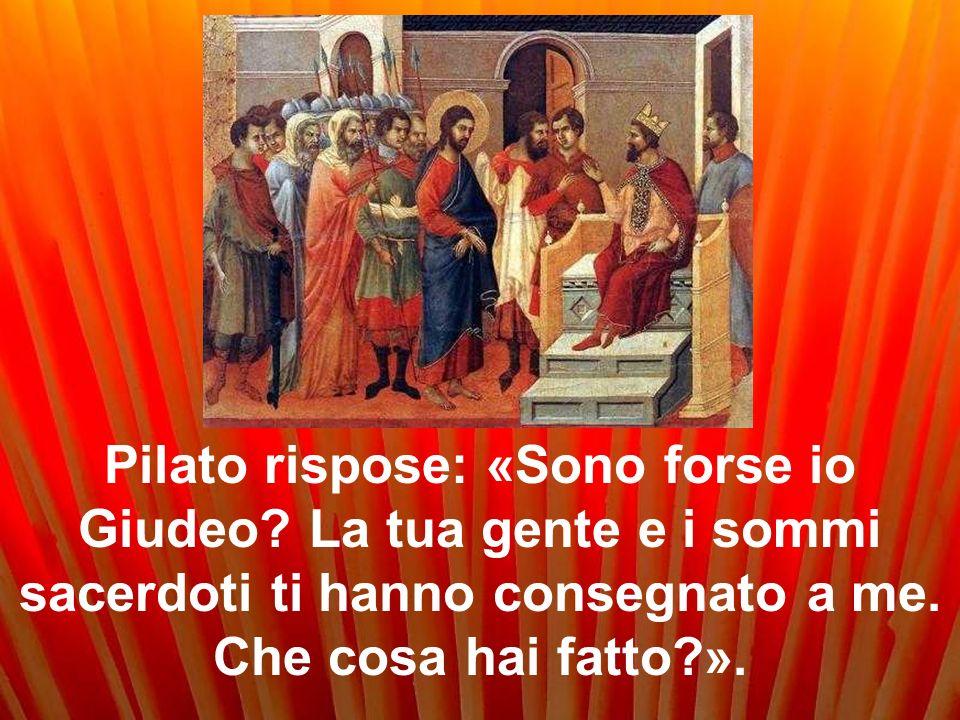 Pilato rispose: «Sono forse io Giudeo