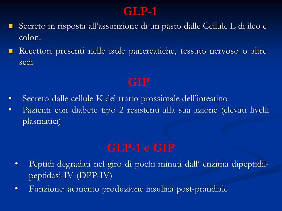 GLP-1 Secreto in risposta all'assunzione di un pasto dalle Cellule L di ileo e colon.
