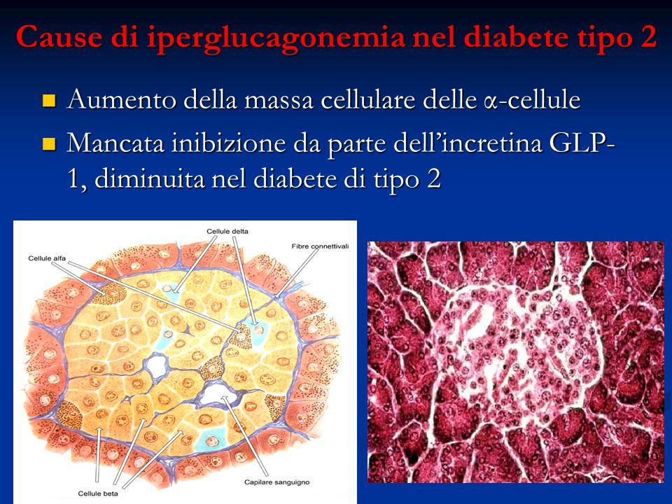 Cause di iperglucagonemia nel diabete tipo 2