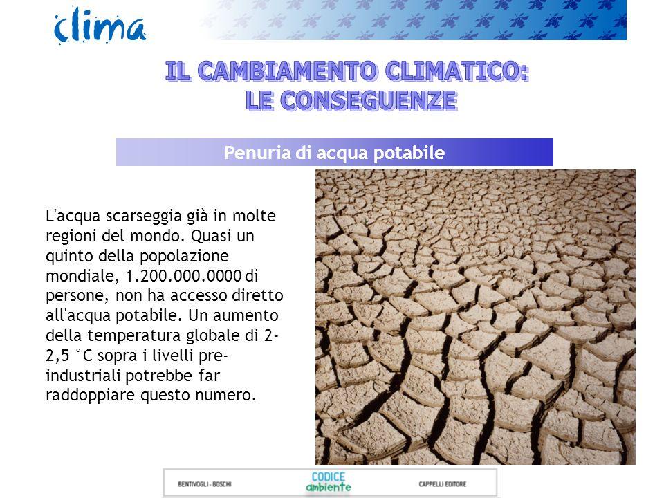 IL CAMBIAMENTO CLIMATICO: Penuria di acqua potabile