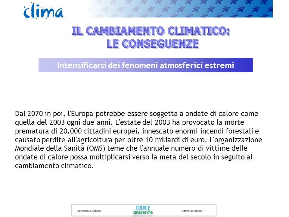 IL CAMBIAMENTO CLIMATICO: LE CONSEGUENZE