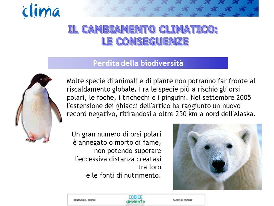 IL CAMBIAMENTO CLIMATICO: Perdita della biodiversità