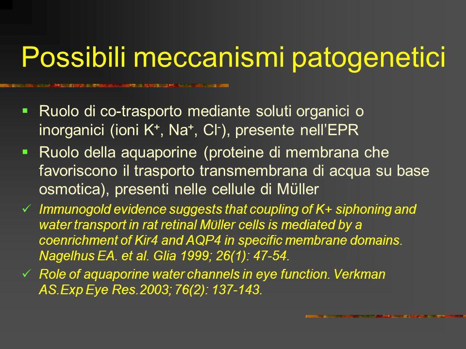 Possibili meccanismi patogenetici