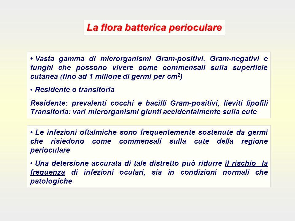 La flora batterica perioculare