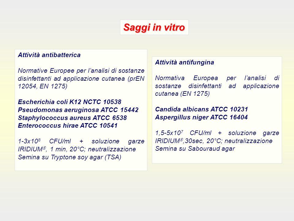 Saggi in vitro Attività antibatterica