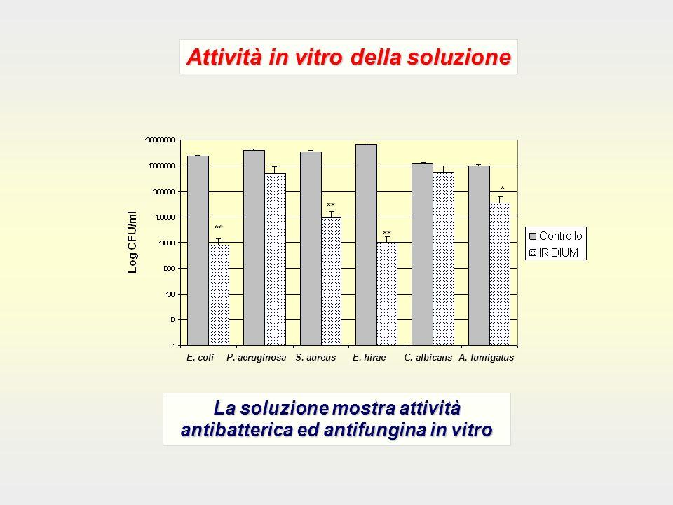 La soluzione mostra attività antibatterica ed antifungina in vitro