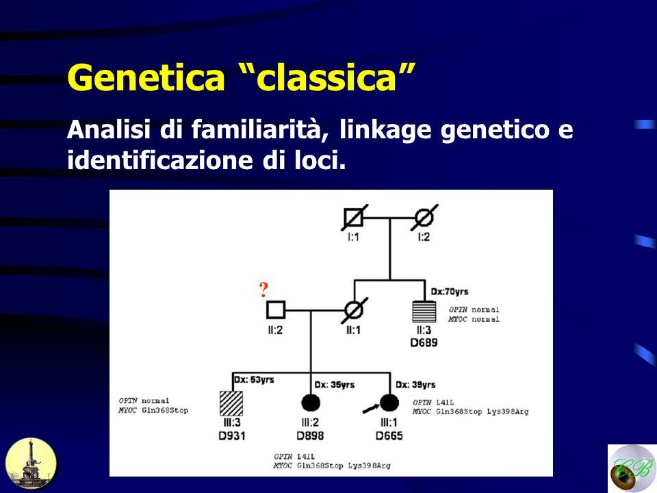 Genetica classica Analisi di familiarità, linkage genetico e identificazione di loci.