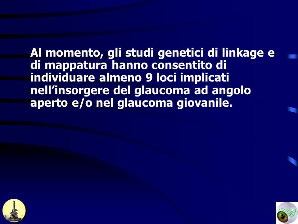 Al momento, gli studi genetici di linkage e di mappatura hanno consentito di individuare almeno 9 loci implicati nell'insorgere del glaucoma ad angolo aperto e/o nel glaucoma giovanile.
