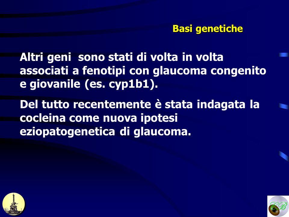 Basi genetiche Altri geni sono stati di volta in volta associati a fenotipi con glaucoma congenito e giovanile (es. cyp1b1).
