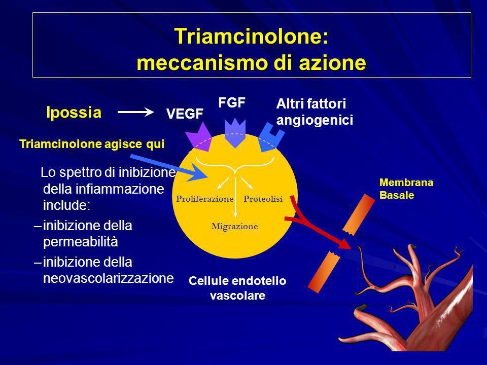 Triamcinolone: meccanismo di azione Cellule endotelio vascolare