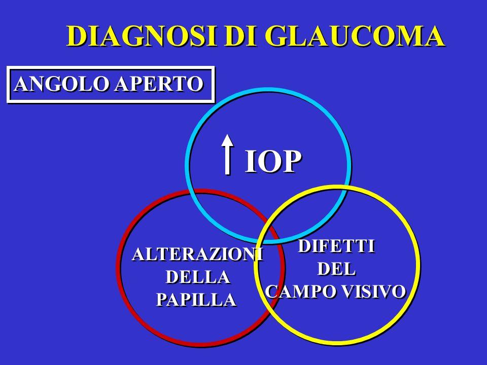 IOP DIAGNOSI DI GLAUCOMA ANGOLO APERTO DIFETTI ALTERAZIONI DEL DELLA
