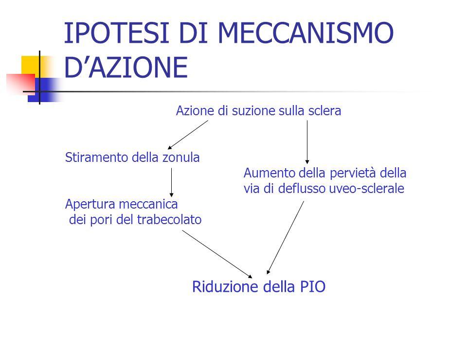IPOTESI DI MECCANISMO D'AZIONE