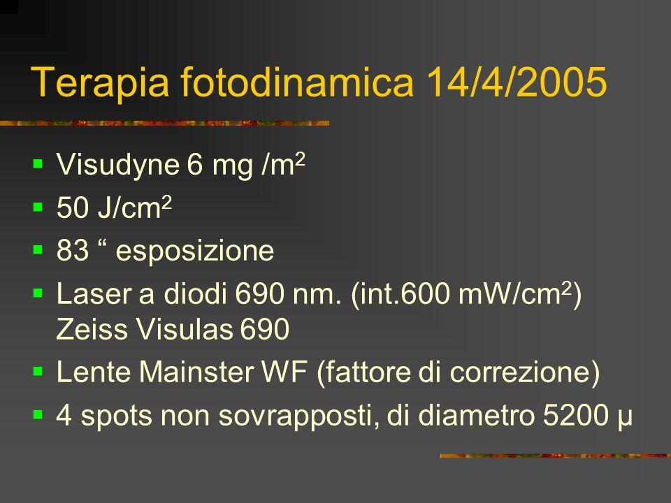 Terapia fotodinamica 14/4/2005